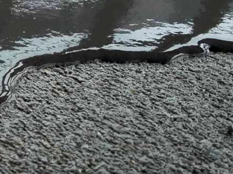 CEMSYS zementbasierte Boden- und Wandsysteme Hermann Riedl in Osterhofen